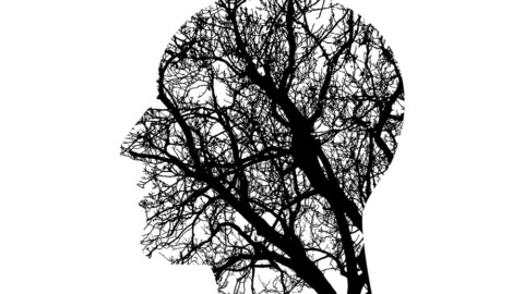 1A Jungmediziner-Tipp – Demenzbetreuung