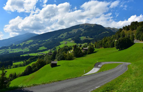 Basisausbildung – Tirol und Oberösterreich an der Spitze